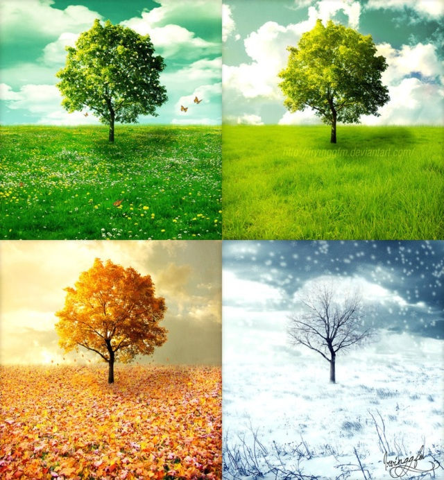 the-four-seasons_Katie-Horton-and-artists-copy-v2