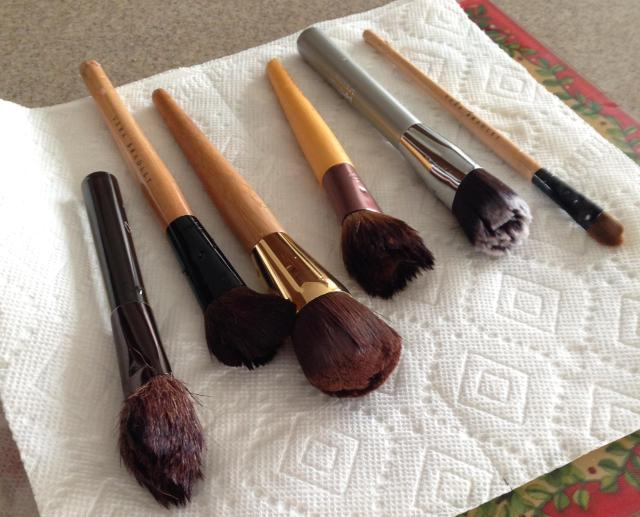 At least the brushes got cleaned!