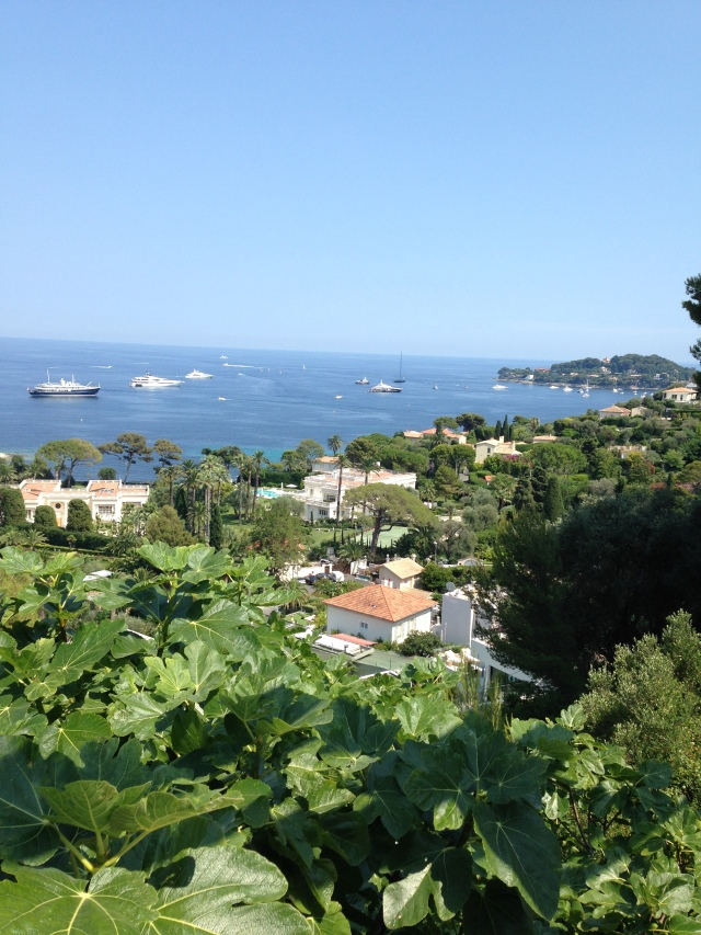 Cap Ferrat. View of beautiful homes and yachts that should be rightfully mine.