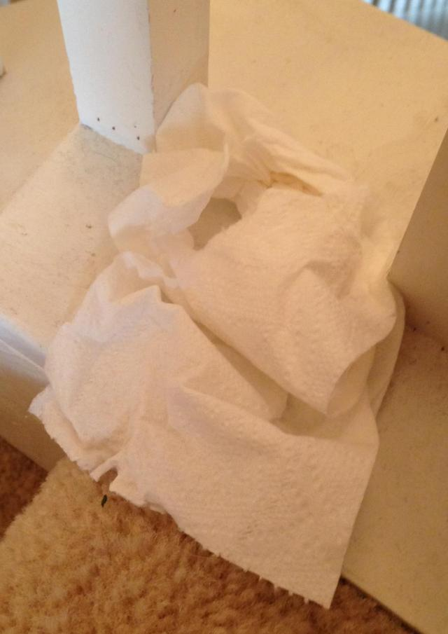 Toilet paper doubles as a duster. Just make sure it hasn't been used