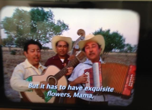 This aint no mouse Mexican roots music