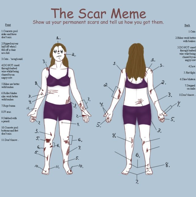 scar mem by Bleukettu on Deviant Art