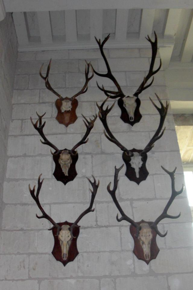 after effects of hunting at Chambord