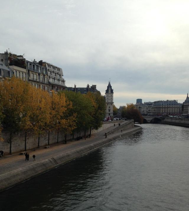 Paris. Day view of Siene. Nice and overcast!