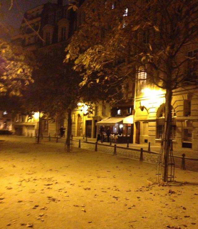 Paris. Night. October 23, Place Dauphine and street scene