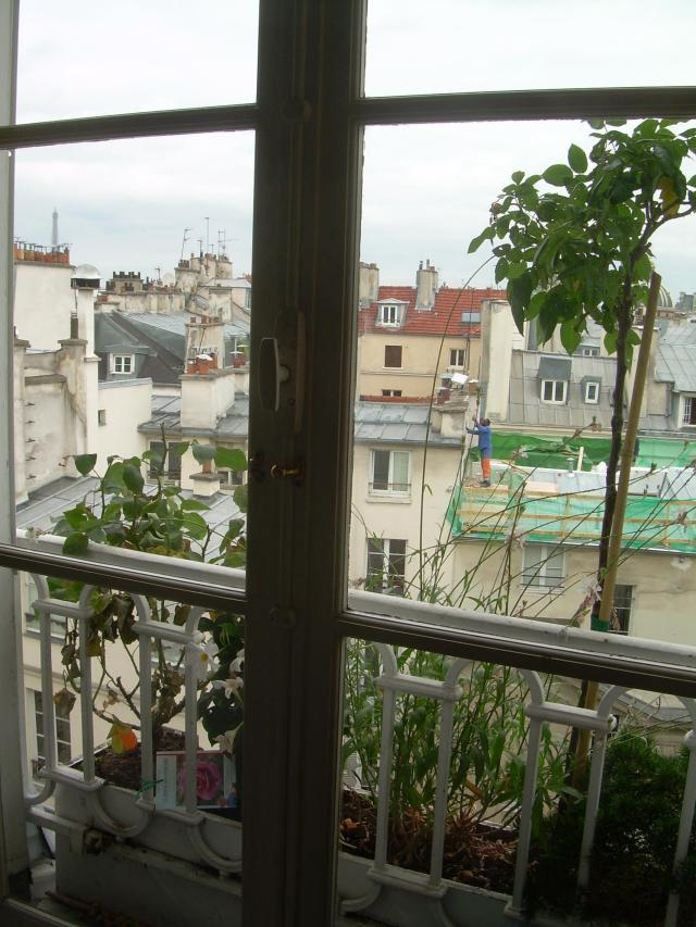 Paris. View from Daniele's window