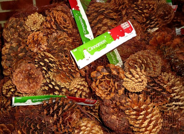 Tis The Season Pinecones
