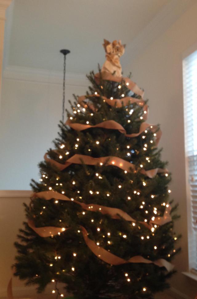 Burlap ribbon is on the tree
