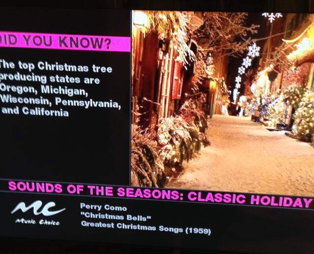 Listening to Christmas music on TV
