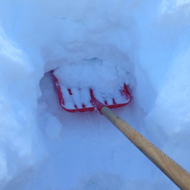What I shoveled