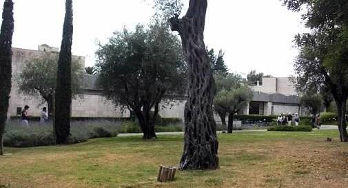 Chagall musee exterior