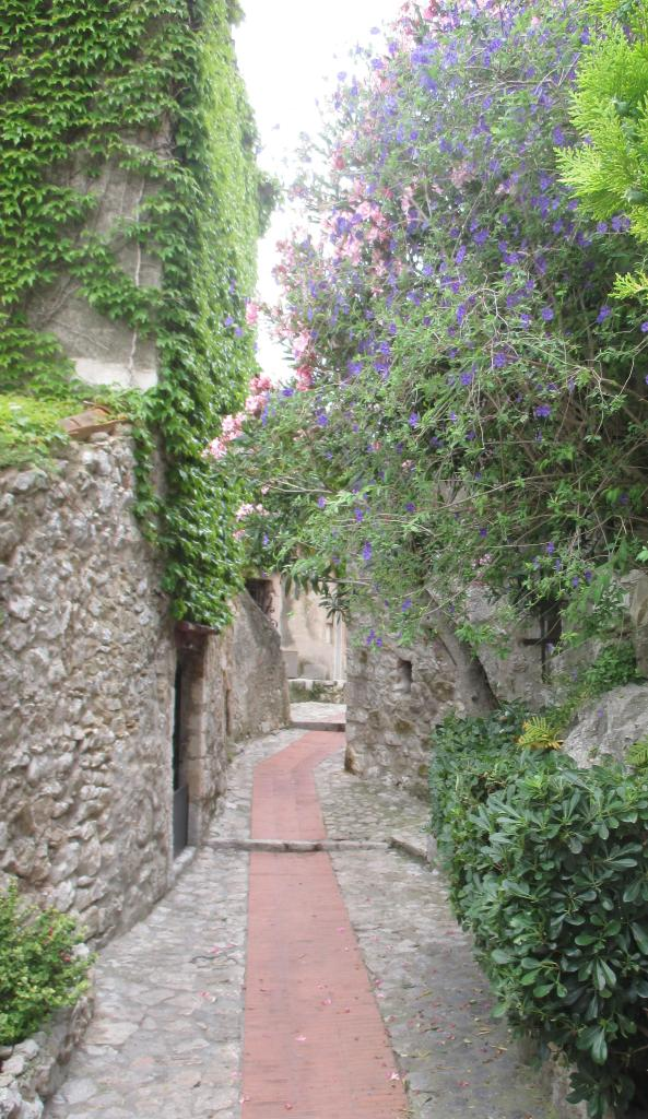 Eze. Path lined with fleurs