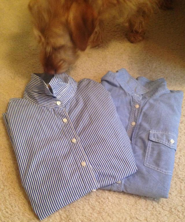 two-shirts-i-see-chippys-favorite