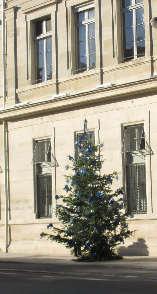 monday-another-christmas-tree-in-the-street
